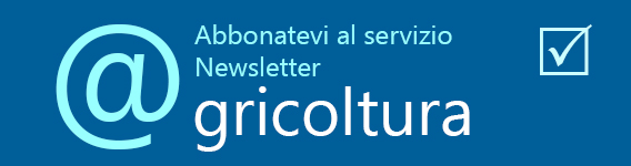 newsletter abbonatevi